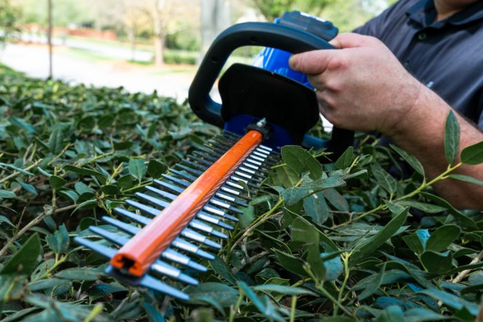 40 Volt Hedge Trimmer from Wild Badger Power close up