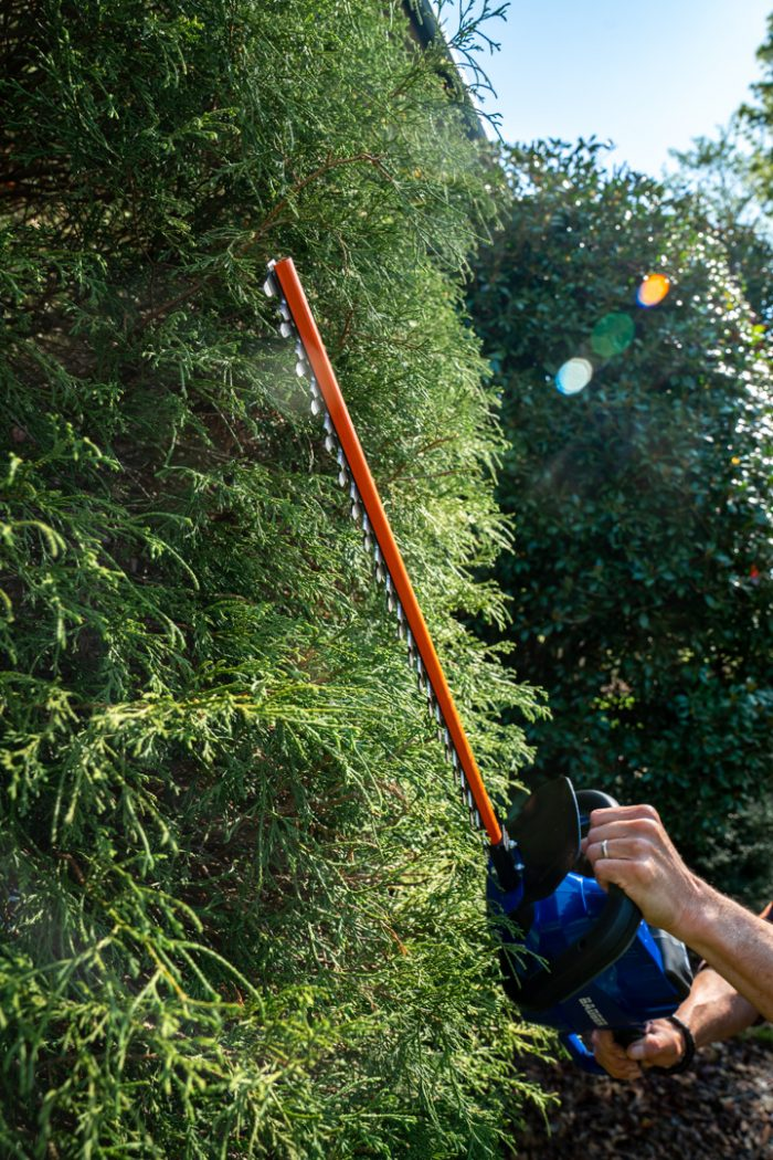 40 Volt Hedge Trimmer from Wild Badger Power cutting tall hedges